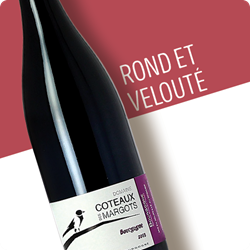 Image de Bourgogne AOP - Pinot Noir - 75cl